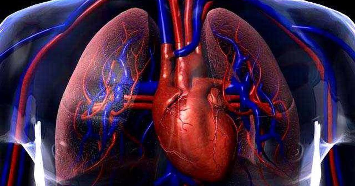 दिल की कहानी में एंजियोप्लास्टी और बाईपास सर्जरी के बाद भी कई ट्विस्ट आते हैं!