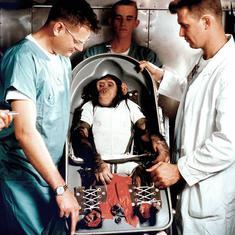 चिंपांजी को अंतरिक्ष अभियान पर भेजे जाने के अलावा 31 जनवरी के नाम और क्या दर्ज है?